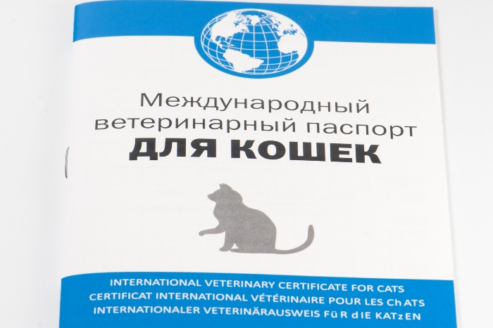 veterinar pasport