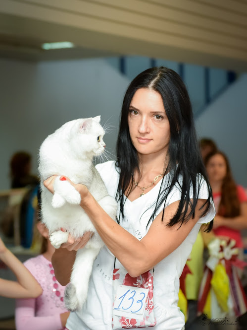 Markissa Orfey on cat show